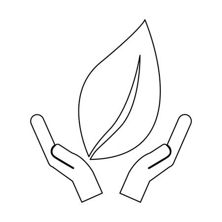 vegetate: leaf nature icon image vector illustration design