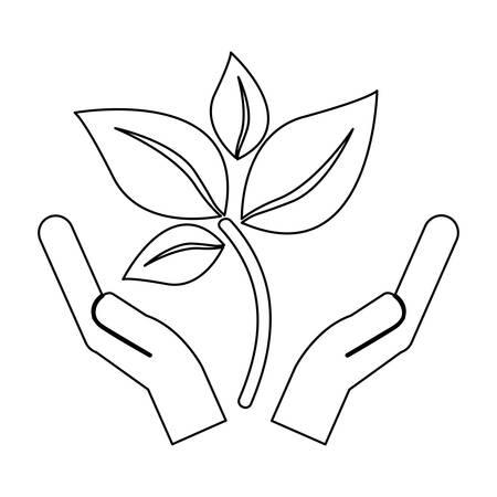 leaf nature icon image vector illustration design