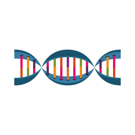 molecule of DNA with information genetic vector illustration Illustration