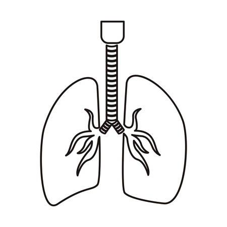 el sistema respiratorio contorno con la ilustración de los pulmones del vector