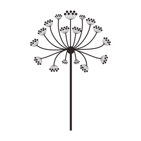 ramification: silhouette dandelion with stem and pistil vector illustration Illustration