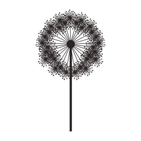 pistil: silhouette dandelion with stem and pistil vector illustration Illustration