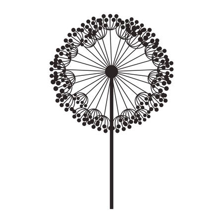 silhouette dandelion with stem and pistil vector illustration Illustration