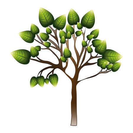 silhouette tree with leafy branches vector illustration Illustration