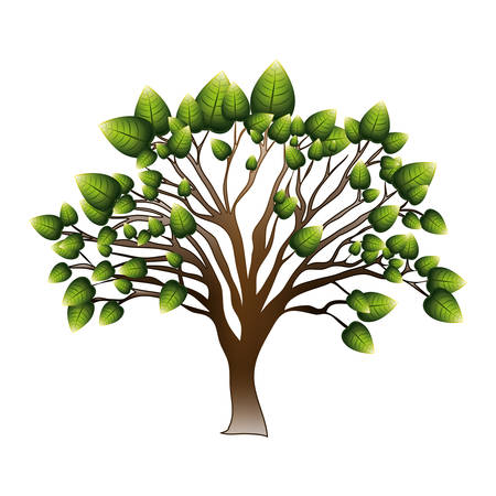 leafy: silhouette tree with leafy branches vector illustration Illustration