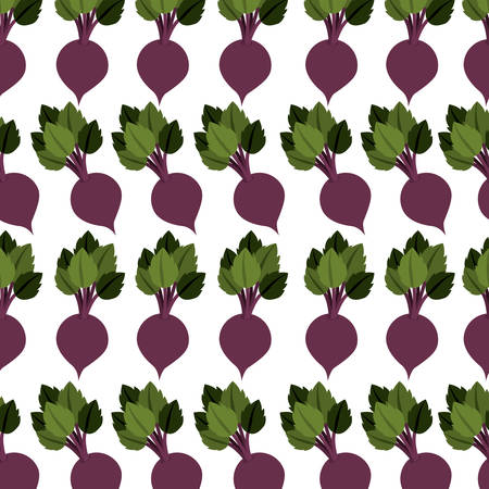 veg: colorful pattern with beet vegetable vector illustration