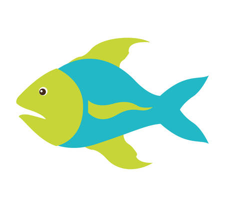 fins: colorful silhouette with sea fish blue and fins green vector illustration Illustration