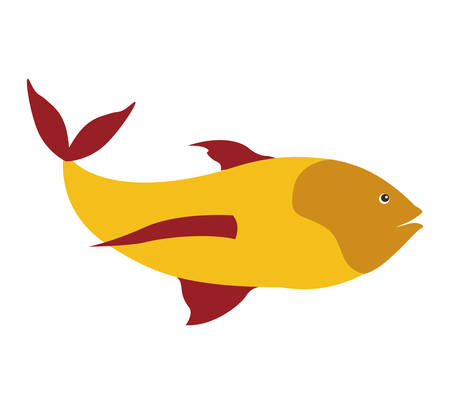 colorful silhouette with sea fish yellow and fins red vector illustration Illustration