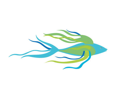 colorful silhouette with sea fish long fins vector illustration