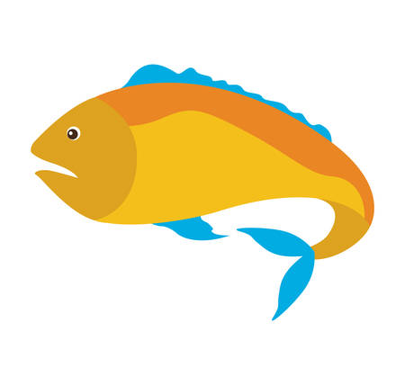 837 Yellow Tail Fish Stock Illustrations, Cliparts And Royalty ...