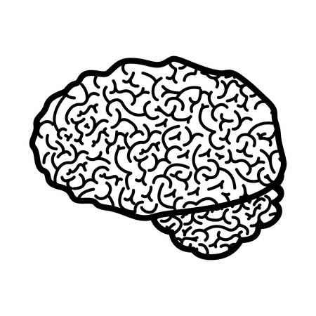 brain silhouette monochrome with side view vector illustration