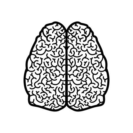 brain silhouette monochrome with two cerebral hemispheres vector illustration
