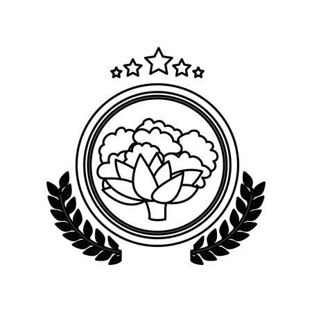 cauliflower: Cauliflower icon. Organic healthy and fresh food theme. Isolated design. Vector illustration Illustration