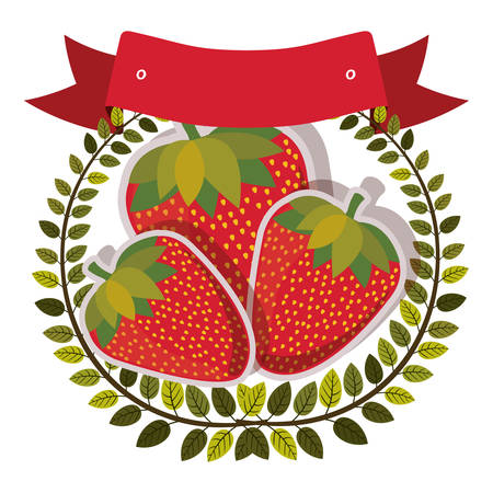 strawberrys: colorful olive crown and label with strawberrys with shadow vector illustration Illustration