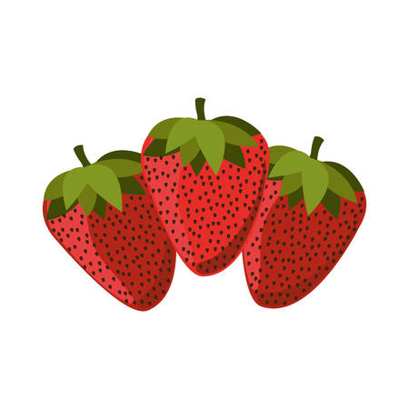 silhouette colorful set with strawberrys vector illustration