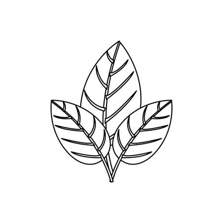 contour three leaves with ramifications vector illustration