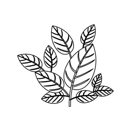 silhouette ornament leaves with ramifications vector illustration Illustration