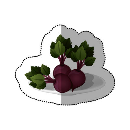 colorful sticker of set collection beets vegetable vector illustration