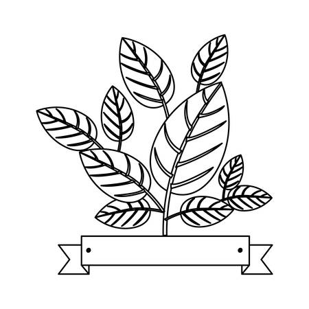 indicate: Natural leaves Ecology icon vector illustration graphic design Illustration
