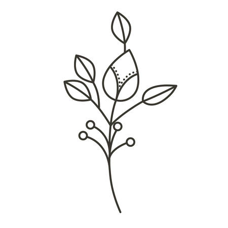 silhouette ramifications flower with stem and branches . Vector illustration Illustration
