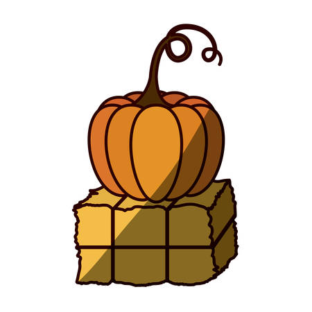 hay bale: silhouette color with bale of hay and pumpkin with half shadow . Vector illustration