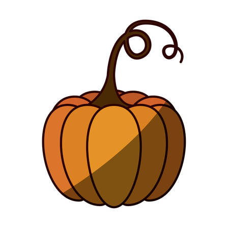 silhouette color with pumpkin with half shadow vector illustration