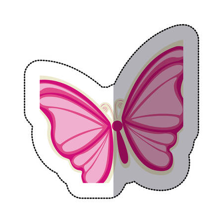 sticker with a pink butterfly vector illustration Illustration
