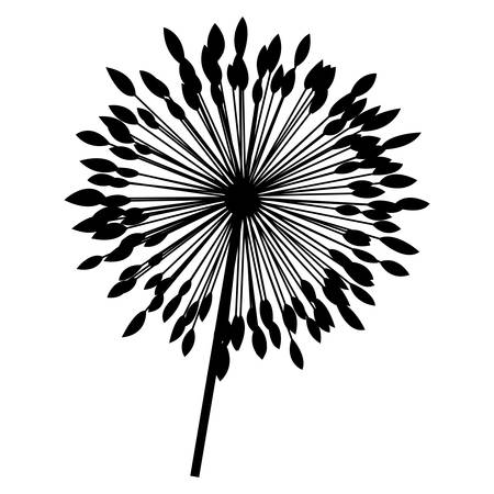 silhouette dandelion with stem and pistil closeup vector illustration Illustration