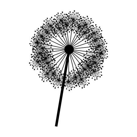 pistil: contour dandelion with stem and pistil closeup vector illustration
