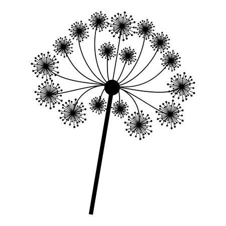 silhouette dandelion with stem and pistil closeup vector illustration . Vector illustration Illustration