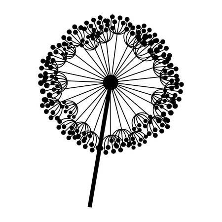 silhouette dandelion with stem and pistil closeup vector illustration Illustration