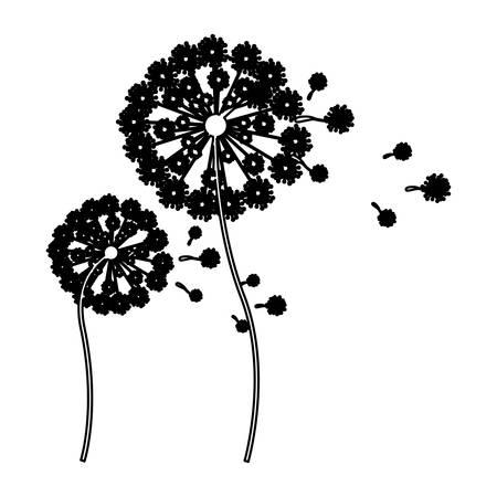 pistil: black silhouette dandelion with stem and pistil and fly petals vector illustration Illustration