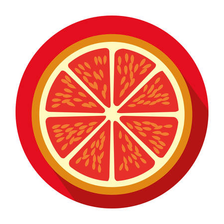 colorful circular shape with slice orange fruit vector illustration Illustration