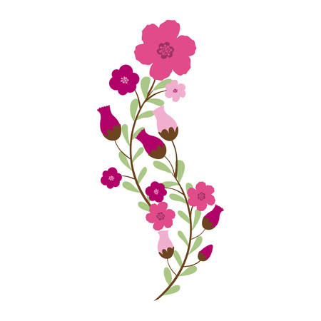Beautiful flowers ornament icon vector illustration graphic design Illustration