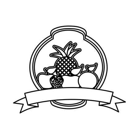 silhouette rounded heraldic border with still life fruits vector illustration  イラスト・ベクター素材