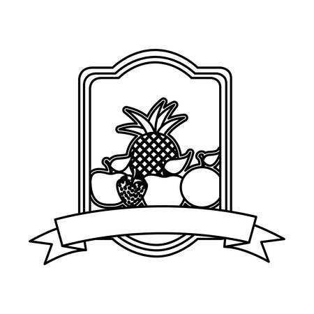 silhouette rectangle heraldic border with still life fruits vector illustration