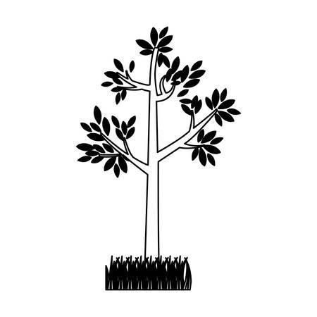 silhouette contour: contour silhouette tree leafy with bush vector illustration Illustration