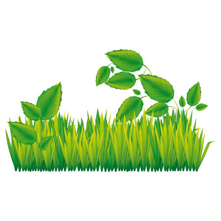 floor plant: color silhouette with field grass and plants vector illustration