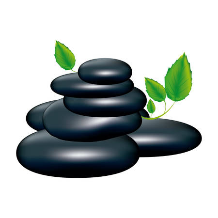 preventive: spa volcanic rocks with leaves icon, vector illustraction design image Illustration
