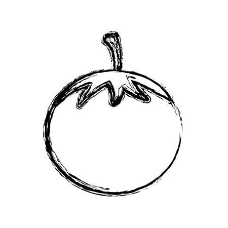 contour vegetable tomato icon, vector illustraction design image Illustration