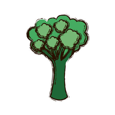 green vegetable broccoli icon, vector illustraction design image Illustration