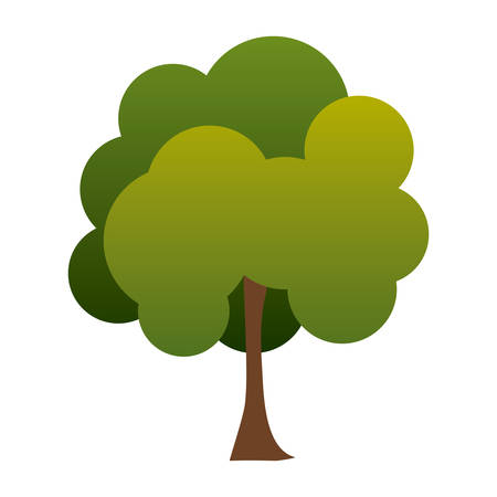 colorful green tree plant eco nature vector illustration