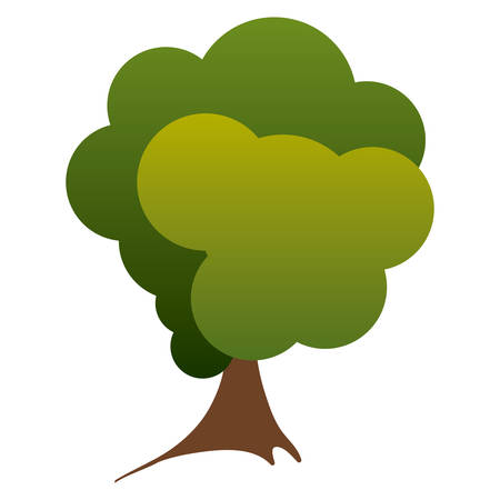 colorful silhouette green tree nature icon vector illustration