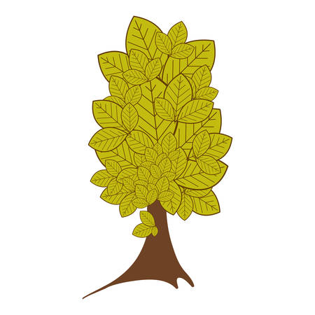colorful tree plant with several leaves vector illustration Illustration