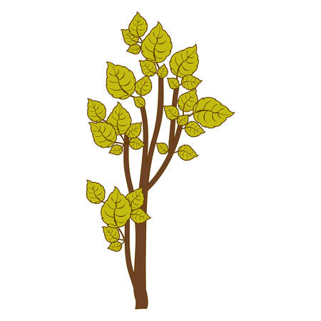 green small leafy tree forest icon vector illustration