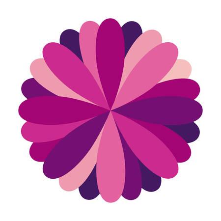 purple circular frame formed by petals vector illustration Illustration