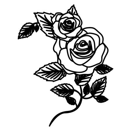 figure roses with squere petals and leaves icon, vector illustraction Illustration