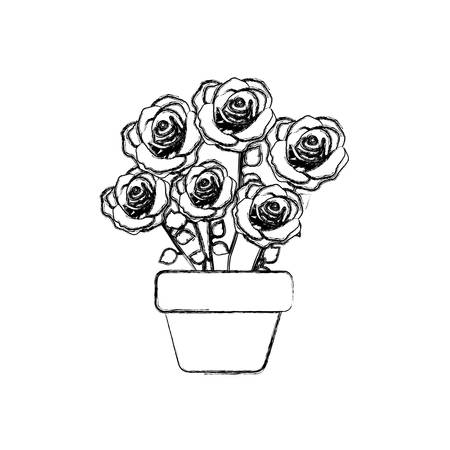 figure roses inside flower pot icon, vector illustraction design