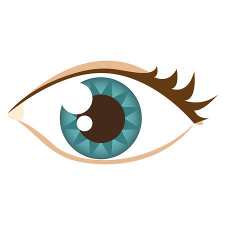 cartoon human female eye with eyelash vector illustration Illustration