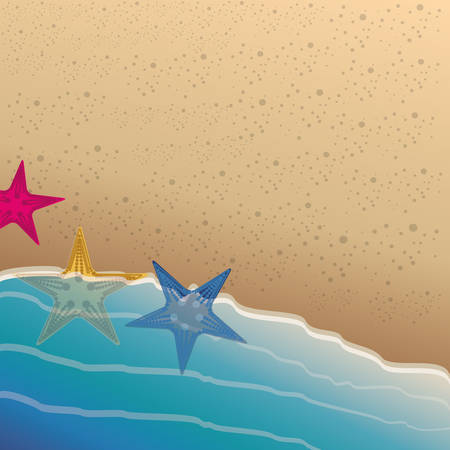 colorful background of the beach shore with starfish vector illustration